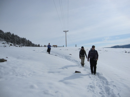 Snowshoeing at Hall Ranch