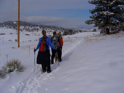 Snowshoe at Hall Ranch