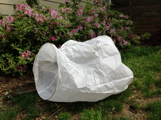 """I'm captioning """"Azalea with Sky Lantern"""" just to see how many people are searching for this very combination on google."""